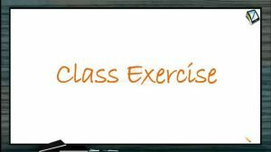 Collision - Class Exercise (Session 1 & 2)