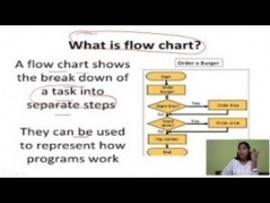 Computer Science And IT - Programming An Overview Chapter-VII Part VI Video by Pluto Innovations