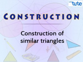 Class 10 Mathematics - Construction Of Similar Triangles Video by Lets Tute