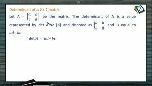 Determinants And Matrices - Minor And Cofactor (Session 4)