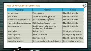 Domestication And Improvement In Animals - Diseases Of Bees (Session 3)