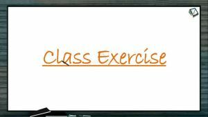 Enzymes - Class Exercise (Session 1)