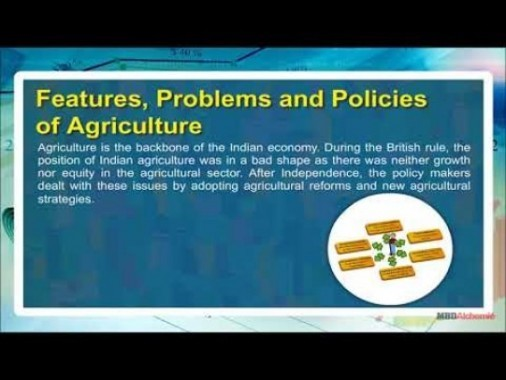 Class 11 Economics - Features - Problems And Policies Of Agriculture Video by MBD Publishers