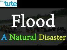 Class 9 Science - Flood - A Natural Disaster Video by Let's tute