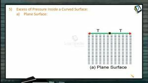 Fluids - Excess Of Pressure And Capillarity (Session 7 & 8)