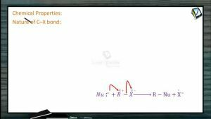 Halogen Compounds - Chemical Properties (Session 4)