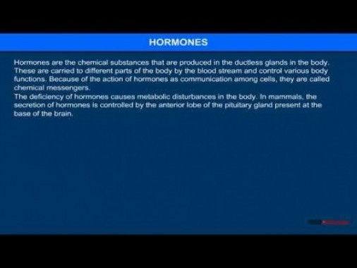 Class 12 Chemistry - Hormones Video by MBD Publishers