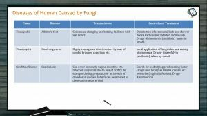 Human Health And Diseases - Diseases Of Human Caused By Fungi (Session 7)
