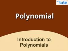 Class 9 Mathematics - Introduction To Polynomials Video by Lets Tute