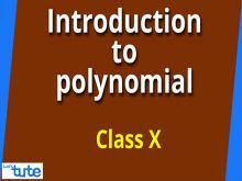 Class 10 Mathematics - Introduction To Polynomials Video by Lets Tute