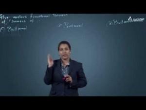 Isomerism - Illustrations Video By Plancess