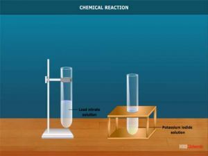 Grade X Chemical Reaction