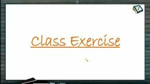 Newtons Law of Motion - Class Exercise (Session 1)