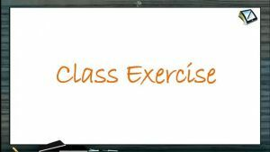 Newtons Law of Motion - Class Exercise (Session 5)