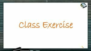 Newtons Law of Motion - Class Exercise (Session 8)