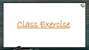 Origin And Evolution Of Life - Class Exercise (Session 12)