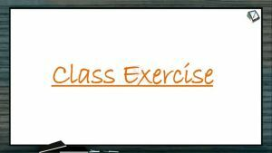 Origin And Evolution Of Life - Class Exercise (Session 4)