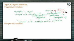 Origin And Evolution Of Life - Retrogressive Evolution (Session 4)