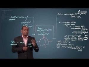 p-Block Elements - Borax Video By Plancess