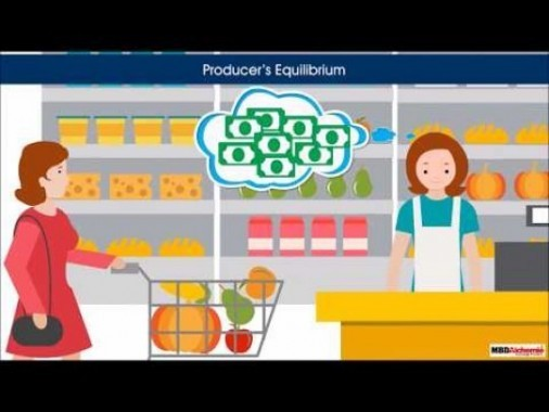 Class 12 Microeconomics - Perfect Maximisation Under Perfect Competition Video by MBD Publishers
