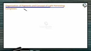 Photosynthesis - Organisation Of Pigments And Concept Of LHC (Session 1)
