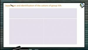 Practical Chemistry - Separation And Identification Of The Cations Of Group IIIa (Session 6 & 7)