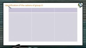 Practical Chemistry - Seperation And Identification Of Cations Of Group V (Session 6 & 7)