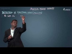 Practical Organic Chemistry - Detection Of Amides Video By Plancess