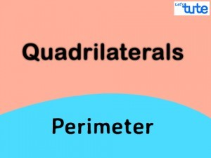 Class IX Maths - Quadrilateral - Perimeter Video By Lets Tute