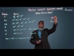 Qualitative Analysis - Basic Radicals-I Video By Plancess