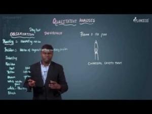 Qualitative Analysis - Dry Test & Cobalt Nitrate Test Video By Plancess