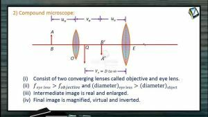 Ray Optics - Compound Microscope (Session 19 & 20)