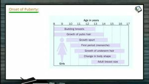 Reproduction In Organisms - Onset Of Puberty And Reproductive Period (Session 6)