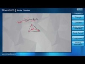 Class 10 Mathematics - Similar Triangles Video by Lets Tute