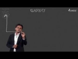 Simple Harmonic Motion & Elasticity - Hooks Law & Deviation Video By Plancess