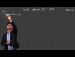 Simple Harmonic Motion & Elasticity - Illustrations-III Video By Plancess