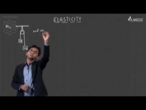 Simple Harmonic Motion & Elasticity - Illustrations-IV Video By Plancess