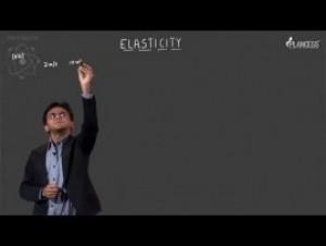 Simple Harmonic Motion & Elasticity - Illustrations-VI Video By Plancess