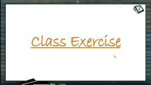 Straight Lines - Class Exercise (Session 3)