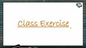 Straight Lines - Class Exercise (Session 4)