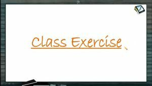 Straight Lines - Class Exercise (Session 5 & 6)