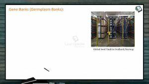 Strategies For Enhancement in Food Production - Gene Banks (Germplasm Banks) (Session 4)