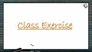 Structural Organisation in Animals - Class Exercise (Session 2)