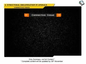 Structural Organisation in Animals - Connective Tissue Proper (Session 2)