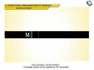 Structural Organisation in Animals - Muscular Tissue (Session 2)
