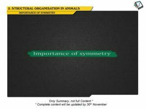 Structural Organisation in Animals - Symmetry (Session 1)