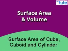 Class 9 & 10 Mathematics - Surface Area Of Cube - Cuboid And Cylinder Video by Lets Tute