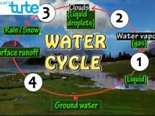 All Class Environmental Science - The Water Cycle Video by Let's tute