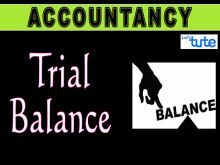 Class 11 Accountancy - Trial Balance Video by Let's Tute