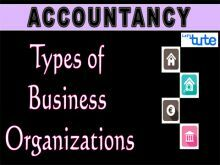 Class 11 & 12 Accountancy - Types Of Business Organisation Video by Let's Tute